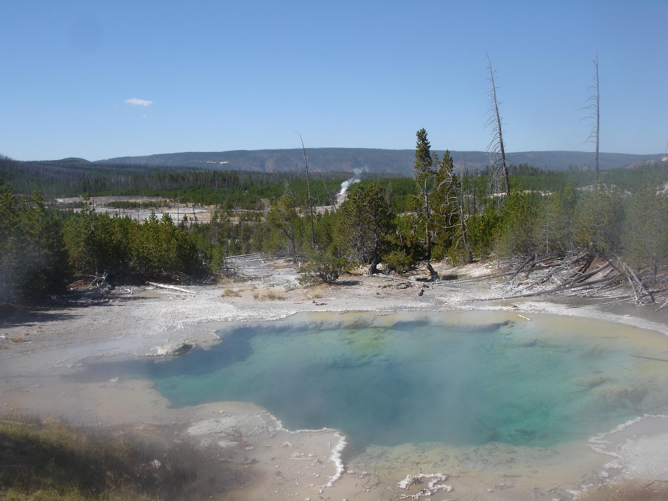 Sponsoring National Parks