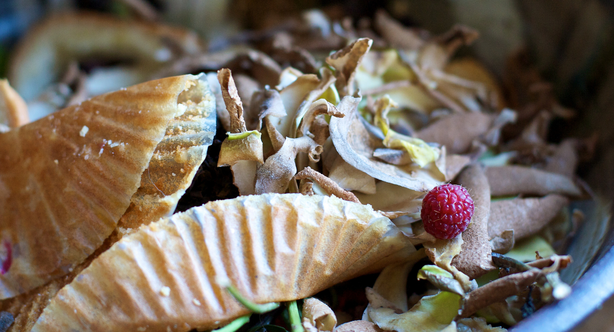 European Lessons On Food Waste