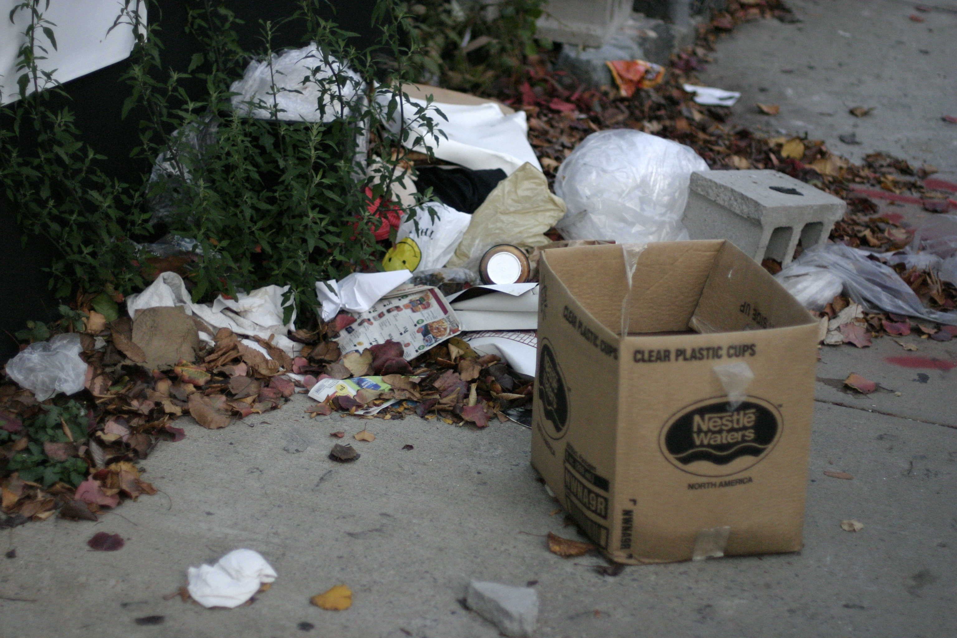Waste In The Big Apple
