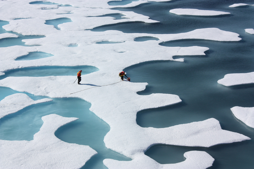 Disappearing Arctic Ice