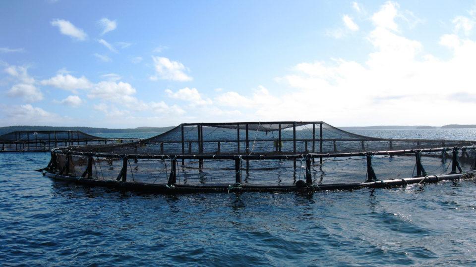 Deepwater Aquaculture