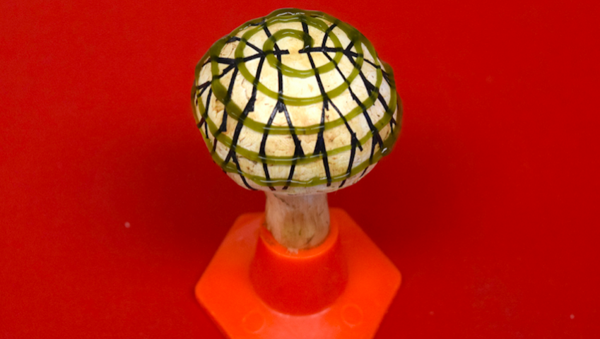 Electricity From A Bionic Mushroom