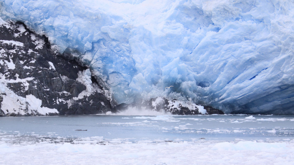 Shrinking Arctic Glaciers