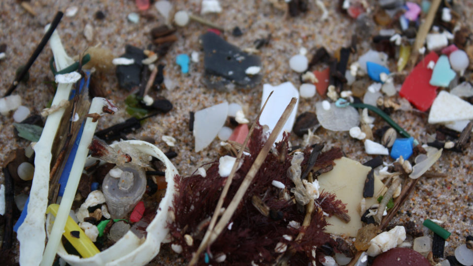 The Threat From Nurdles