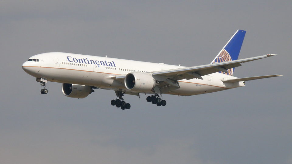 Plant-Based Jet Fuels