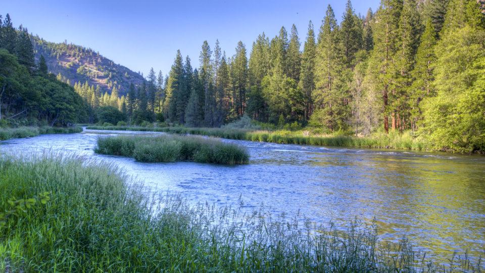 Removing Dams Restores Ecosystems