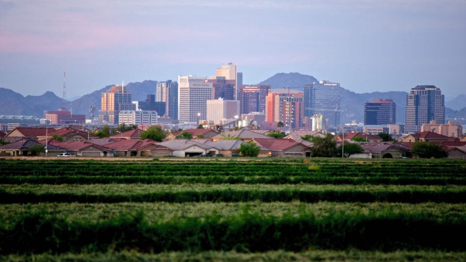 Urban Agriculture And Sustainability Goals